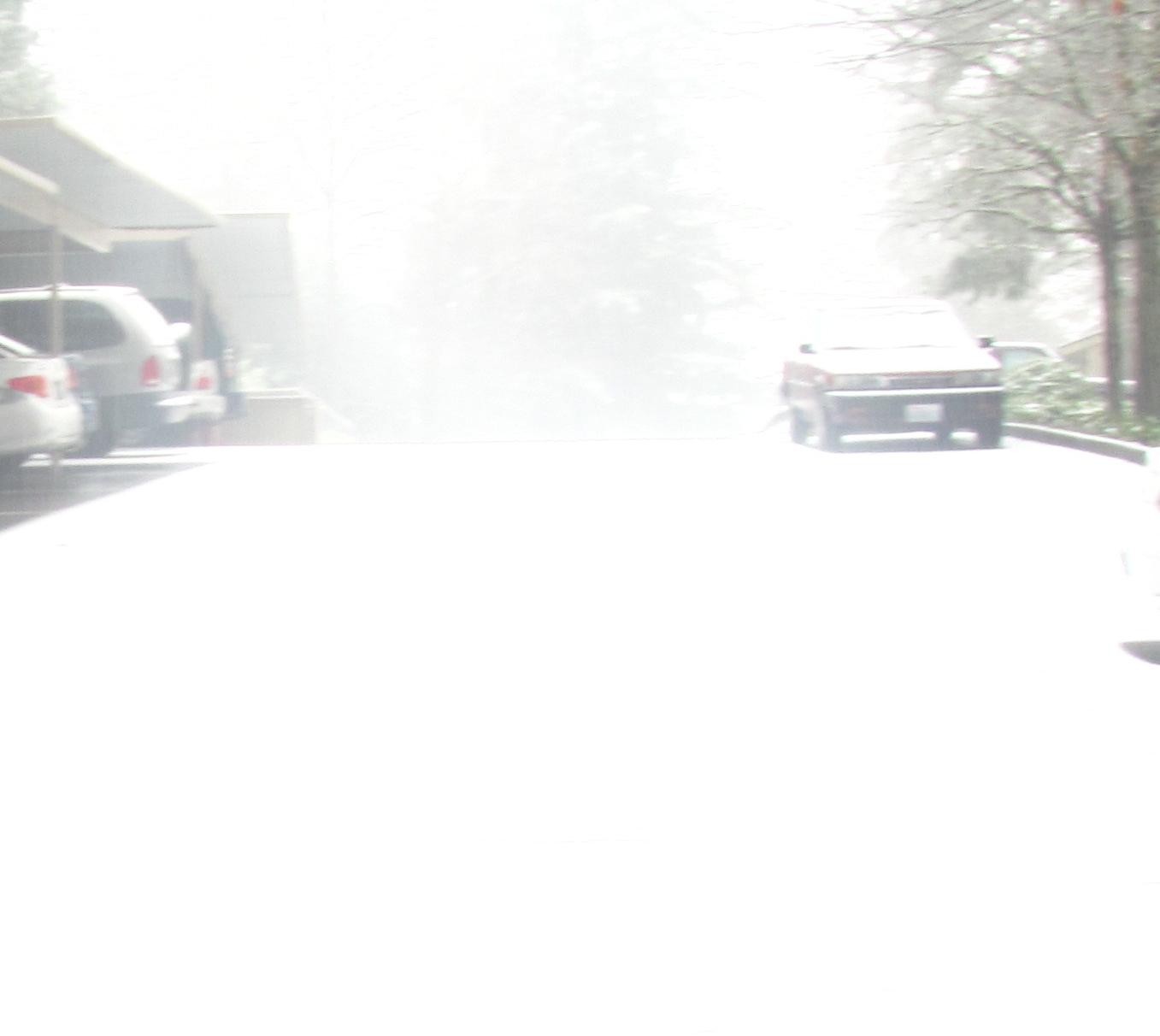 Snow Snow everywhere