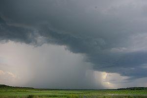 picture of rain