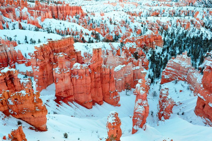 Bryce canyons